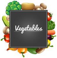Gemengde groenten rond de grens vector