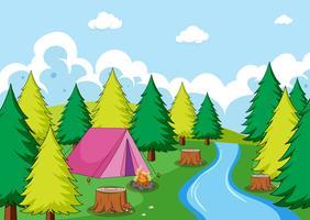 Kamperen in het bos