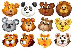 Hoofd van de verschillende dieren
