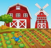 Landelijk landbouwbedrijf en schuurlandschap vector