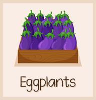 Aubergines in de doos te koop