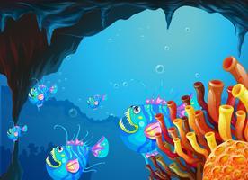 Een grot onder de zee met een school vissen