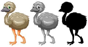 Set van emu karakter vector