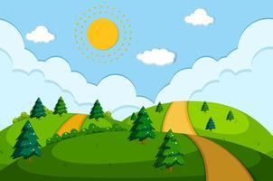 Een weg in de prachtige natuur