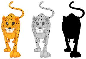 Set van tijger karakter vector
