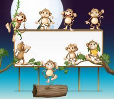 Speelse aap en whiteboard