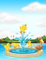 Een eendenfamilie bij de fontein