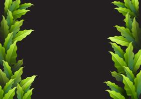 Achtergrondmalplaatje met groene bladeren