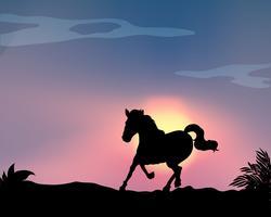 Silhouet paard vector