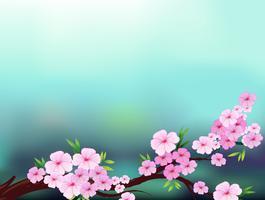 Een briefpapier met kersenbloesembloemen