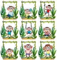 Apen in het houten frame