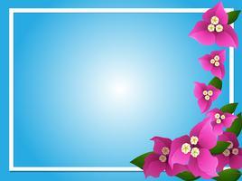 Grensmalplaatje met roze bougainvillea