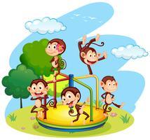 Vijf apen die op de rotonde spelen