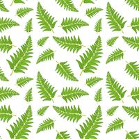 Fern blad naadloze patroon vector