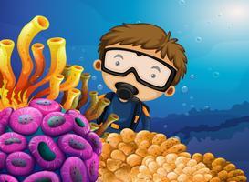 Duiker die onder de oceaan duikt
