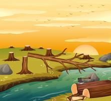 Ontbossingsscène bij zonsondergang