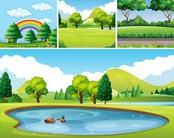 Vier scènes van park bij dagtijd