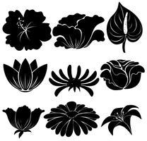 Zwarte planten vector