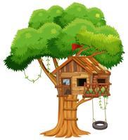 Oude boomhut op de tak