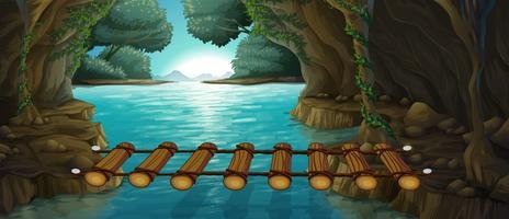 Scène met brug over rivier