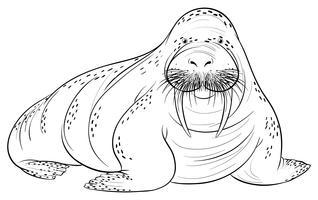 Doodle dier voor walrus vector