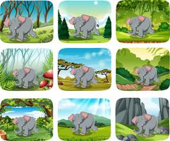 Olifant die in het bos loopt vector