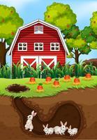 Een groep konijnen die ondergronds leven