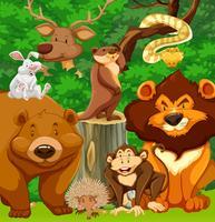 Wilde dieren in het park vector