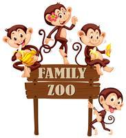 Leuke apen die op houten teken zitten