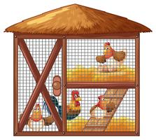 Kippen in kippenhok vector