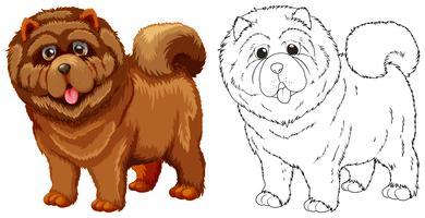 Dierenoverzicht voor donzige hond vector