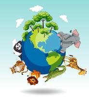 Wilde dieren over de hele wereld vector