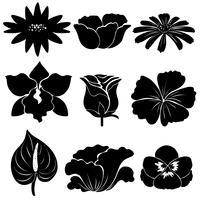 Zwarte bloem sjablonen vector