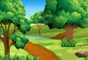 Scène met bomen langs het parcours