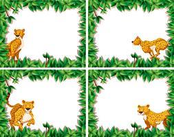 Set van cheetah op aard frame vector