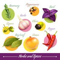 Kruiden en specerijen ingesteld