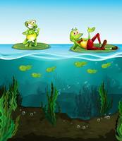 Twee gelukkige kikkers en kikkervisjes in de vijver