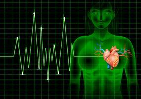 Heartbeat van mens en grafiek vector