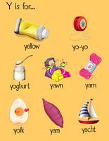 Veel woorden beginnen met de letter Y vector