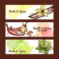 Kruiden en specerijen Banners vector