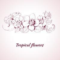Tropische bloemschets vector