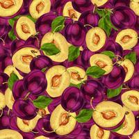 Naadloos pruimfruit gesneden patroon vector