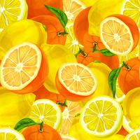 Citrusvruchten naadloze achtergrond vector