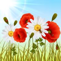 Papaver gras naadloze achtergrond vector