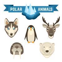 polaire dieren ingesteld vector