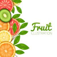 Zomer fruit illustratie vector