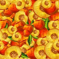 Naadloos perzikfruit gesneden patroon vector