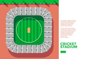 Cricket Stadion Bovenaanzicht Vector