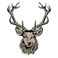 hoofd van herten illustratie