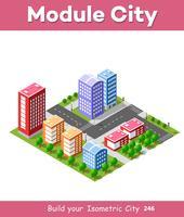 Kleurrijke 3D isometrische stad vector